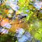 Abstract Macro's from Shallow Creeks or Rivers