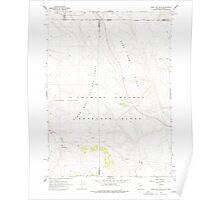 USGS Topo Map Nevada Sage Hen Hills 319970 1966 24000 Poster