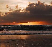 Sun Light, Sun Bright by Sandy Woolard