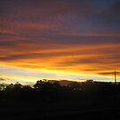 what a sight - Kennedy, North Queensland, Australia by myhobby