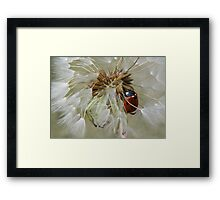 I wish you luck... Framed Print