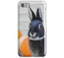 Jitterbug the Rabbit iPhone Case/Skin