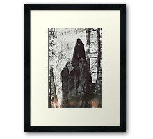 The Harpy Framed Print