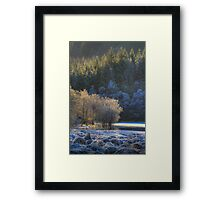 Chon Frost (2) Framed Print