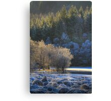Chon Frost (2) Canvas Print