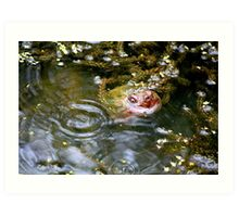 Snapping turtle study 3 Art Print