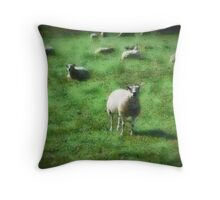 A rural scene in Dorset, UK Throw Pillow