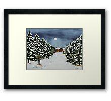 Winter Awe Framed Print