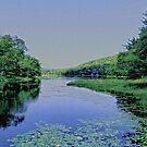 Beautiful Starlight Lake Pa by Monica Engeler