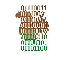squirrel binary code nature animal design Photographic Print