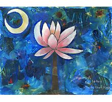 No Mud, No Lotus Photographic Print