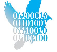 bird binary code dove peace design by Veera Pfaffli