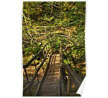 Log Bridge, Becky Falls Poster