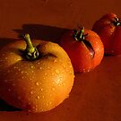 Tres Tomatoes by Amy Herrfurth
