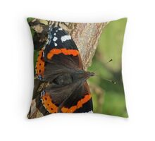 Last Of The Summer Wine Throw Pillow