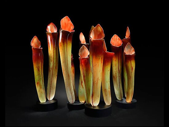 Contemporary Glass Art by Jason B. Gamrath