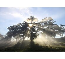 ~ Sunburst ~ Oakbank ~ Photographic Print