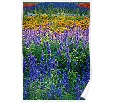 Floral bed in Grosvenor Park Chester uk. Poster