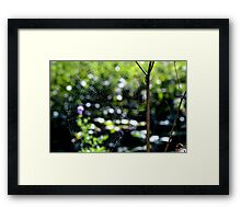 Caught in your web Framed Print