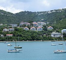 St. Thomas by Linda Fields