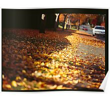 Street leaves  Poster