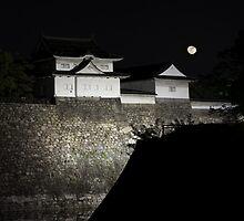 Castle in Osaka, Japan by Maxim Mayorov