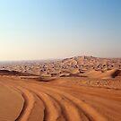 Desert Tracks by dgscotland