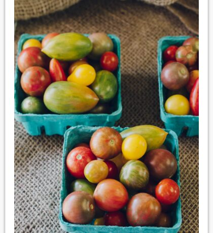 Tomato Rainbow Sticker