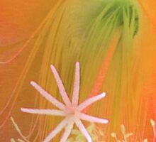 Cactus Blossom Sticker