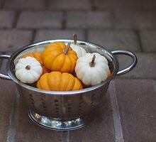 Harvest no. 1 by Bethany Helzer