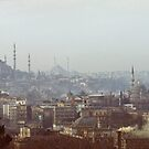 Istanbul Skyline by Quixotegraphics