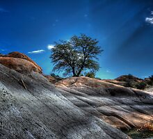 Rocky Relationship by Bob Larson
