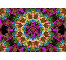 Spun Flowers Photographic Print