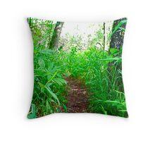 Trail to Trevor's Beach - Barton Creek Greenbelt Throw Pillow