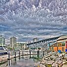 Rock, Dock, and What the Flock (HDR vert pano) by James Zickmantel