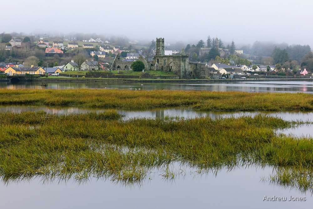 A soft day in Timoleague, County Cork, Ireland by Andrew Jones