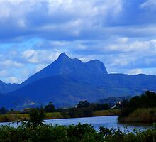 Mt Warning From the River's Edge by Cathie Sherwood