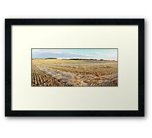 Frost on the barley Framed Print