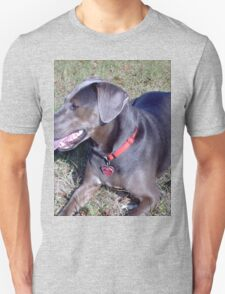 Awesome Blue Lacy Dog T-Shirt