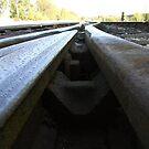 Tracks of my Tears by Paul  Green