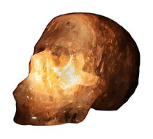 The Crystal Skull On Transparent Background by Terri Waters