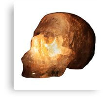 The Crystal Skull On Transparent Background Canvas Print