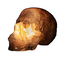 The Crystal Skull On Transparent Background Photographic Print
