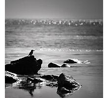 Fishing Grounds Photographic Print