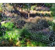 Web abstract Photographic Print