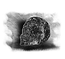 Black And White Skull On Transparent Background Photographic Print