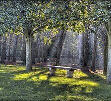 walk in the park... by jean-jean