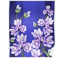 Purple Flowers Blue Blue Sky Poster