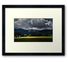 Field of Mustard Framed Print