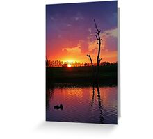 Elmore Sunset Greeting Card